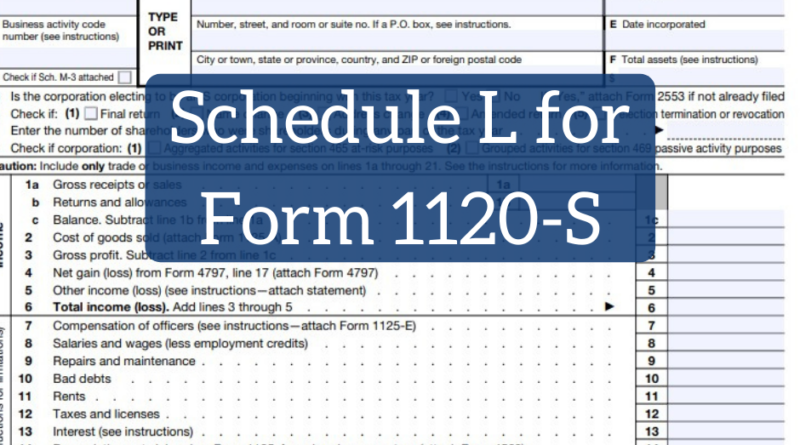 Schedule L (Balance Sheets per Books) for Form 1120-S | White Coat Investor